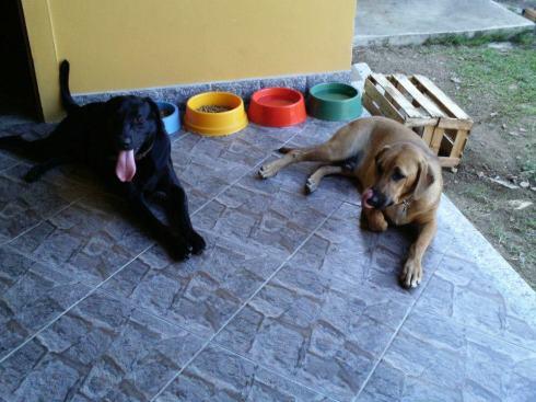 Lucas (agora Marley) e o irmão Barão