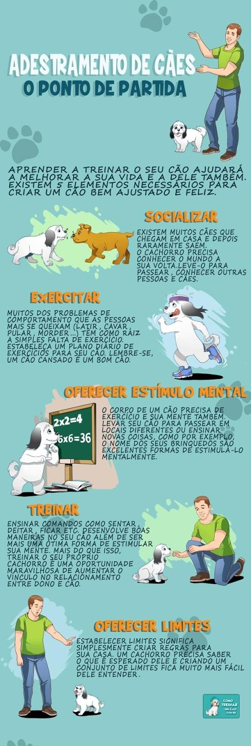 Adestramento-de-Cães-infografo-600px